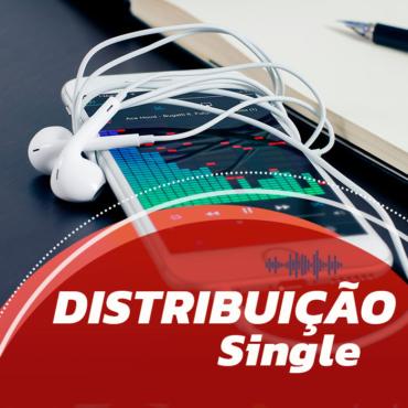 ICONE-DD-single